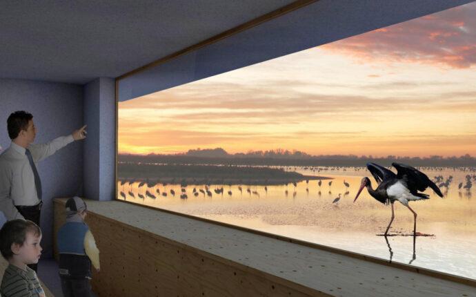 bird-theatre